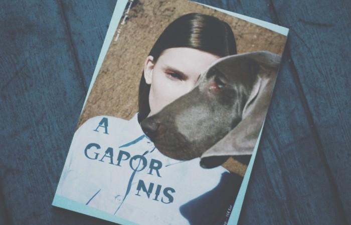 La revista de los mejores amigos