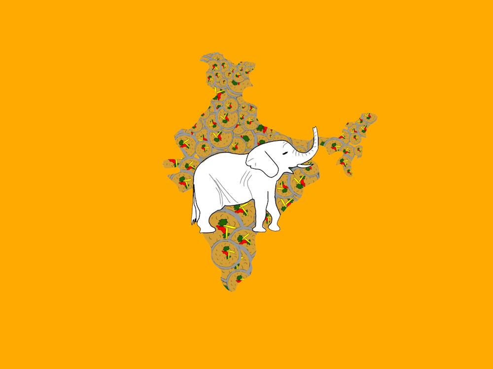 Amarinder, el elefante indio