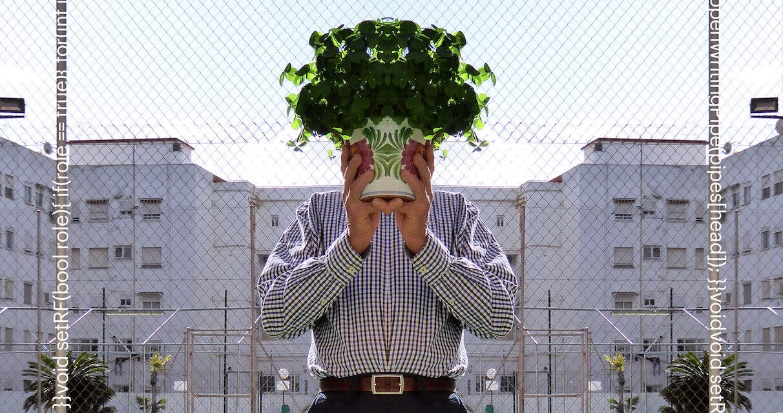 Cuando la Naturaleza y la tecnología se alían