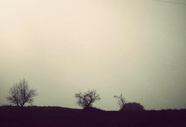Día de niebla.