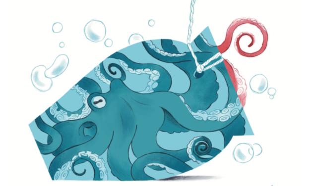 """De la mar al plat"", el calendario de proximidad"