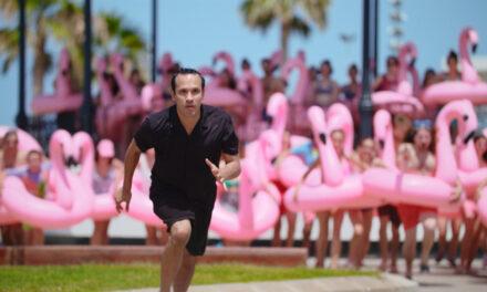 The Mystery of the Pink Flamingo, a la felicidad por lo kitsch