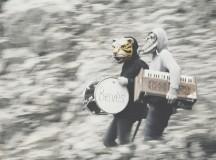 Música para caminar por los bosques