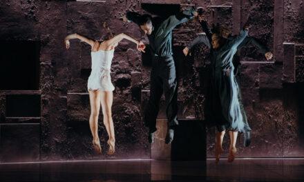 """""""La mort i la donzella"""": Schubert, la vida, la muerte"""