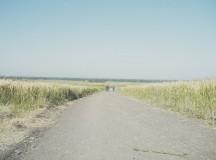 Camino-slide