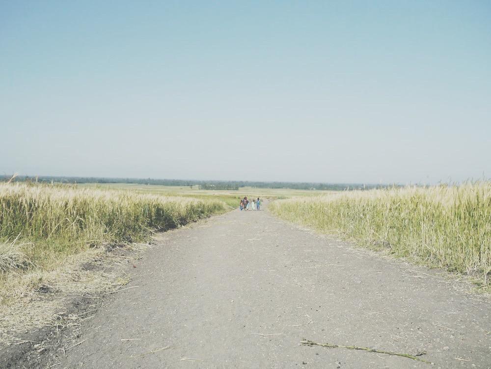 El camino a la escuela
