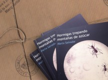 """Hormigas trepando montañas de azúcar"" de Marta Salvador"